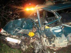 В Пермском крае в ДТП погибли двое взрослых, пострадали двое детей