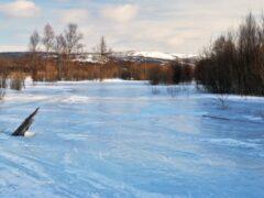 В Смоленской области 38-летний мужчина утонул в реке Добрая