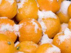 мандарины в снегу