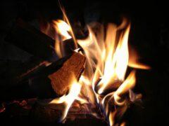 В Курской области горел автомобиль «ВАЗ»