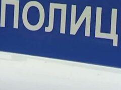 В Черногорске собака помогла найти похитителя железного бака