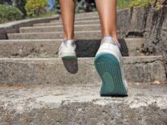 Ученые: 30 минут ходьбы по лестнице могут предотвратить заболевания сердца