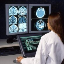 Ученые показали, как развивается мозг у новорожденных