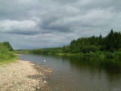 Тело 27-летнего мужчины найдено на берегу реки Чибью в Коми