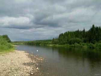 берег реки Чибью