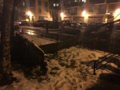 На востоке Петербурга дерево упало на припаркованный автомобиль