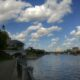 Владимир Ефимов: в Москве становится все больше ИП