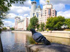 Около 89500 школьников Москвы сдадут ЕГЭ в 2018 году