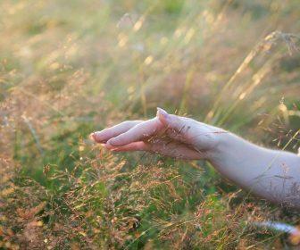 __ природа, трава, лес, рука