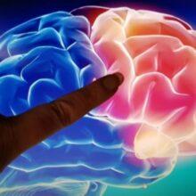 Ученые: Слабость может привести к болезни Альцгеймера