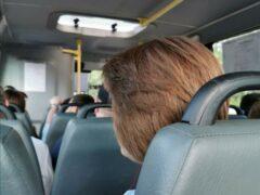 Почти 320 автобусов поступят в автопарк Мострансавто до конца года
