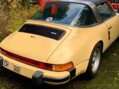 Белки приспособили Porsche 911 для хранения орехов