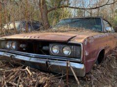 В лесу обнаружили кладбище полувековых Dodge Charger